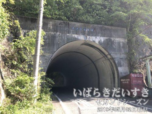 """井戸の入隧道<br>トンネルを抜けるとそこは、""""長浜""""だった。"""