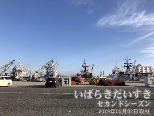 大津漁港漁船の数がたいへん多い。