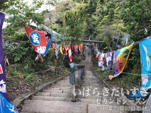 参拝道には大漁旗が掲げられています<br>先ほどの麓からの参拝道を上ってくると、こちらに繋がります。