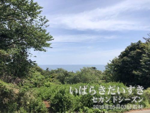大津岬展望台からの眺め<br>灯台が設置されるくらいですから、太平洋を一望できる景観があります。