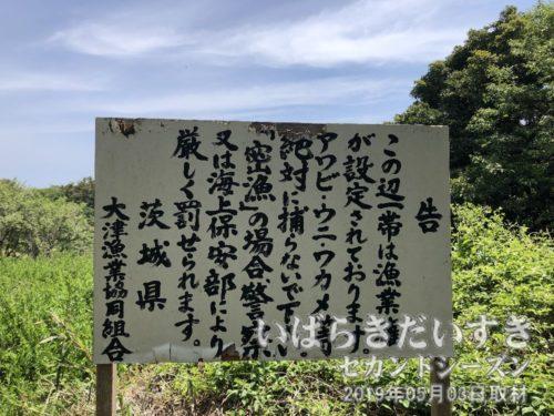「密漁」を禁止する看板<br>草むらには至るところに踏み跡があります。アワビ、ウニ、ワカメなどが捕れる様子。