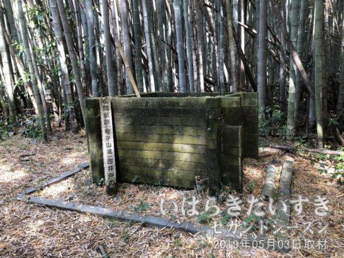 松岡城址/竜子山城址 古井戸の跡