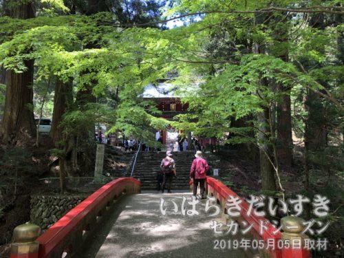 花園神社への参拝道。花園神社ViewSpotのひとつ。