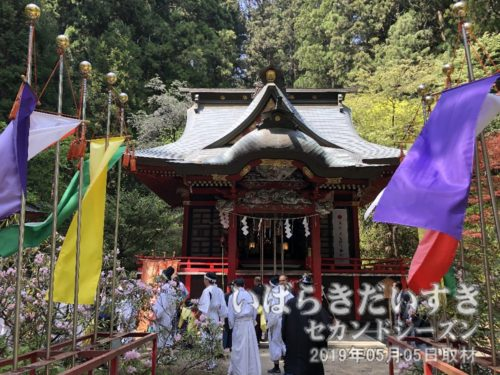 花園神社 拝殿<br>延暦14年(795)征夷大将軍坂上田村麻呂が勅定により、奥州下向の折り、霊夢に導かれ創建したと伝えられます。