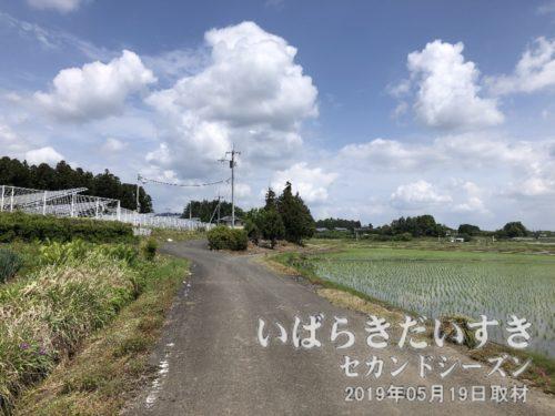 羽鳥駅から西方へ。事前に農道の線を引いておきました。