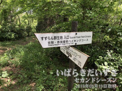 「すずらん群生地 入口」の標識<br>道祖神峠から難台山山頂方面に進んでいくと、左折するように「すずらん群生地」の案内標識が立てられています。