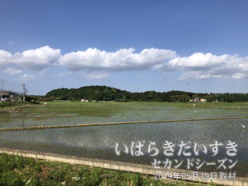 県道42号、笠間市側の田園風景。