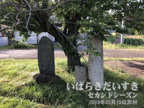 「馬頭尊碑」と「供養」の文字が読める碑。