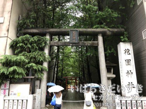 新宿花園神社 鳥居 参拝道
