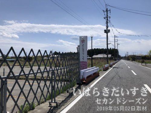 さくらクリニック<br>夜ノ森駅方面から富岡町役場方面に戻る途中。震災当時から閉業中なのでしょう。
