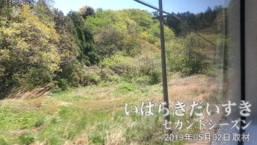 ♪今は山中~ (→)