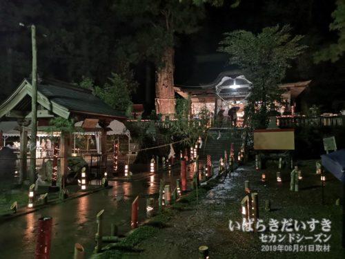 【 下野宮 近津神社 『宵灯籠』 】<br>「御田植祭」の前夜、境内を利用し、竹細工で灯籠の演出。このあと雨が本降りになり、残念でした。