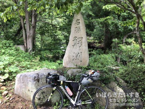「名勝 鰐ヶ渕」の石。