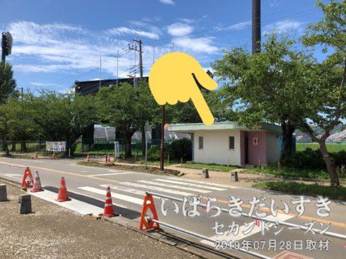 川口運動公園脇のトイレを改修して欲しい。