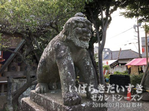 龍ケ崎八坂神社 狛犬 阿形