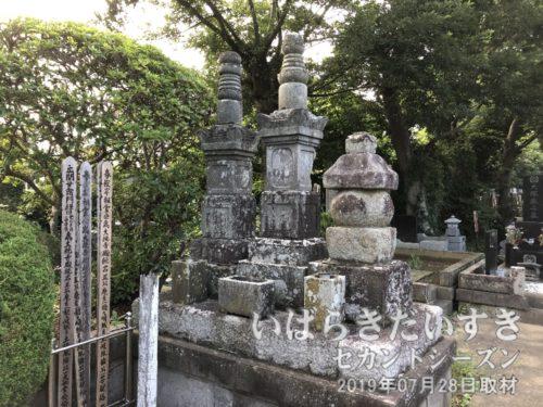 土岐胤倫(とき たねとも)の墓