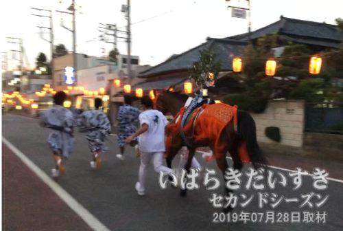 神馬とともに、根町通りを若人達が走り抜けます。