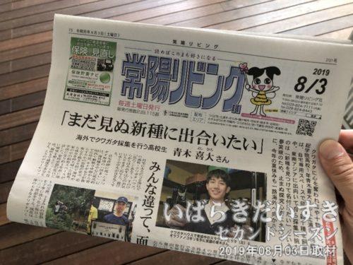 常陽リビング 最新号(08/03号)無料配布<br>かつて常陽新聞(常陽新聞社)の1部門でしたが、後に常陽リビング社として独立し、今に至ります。