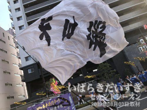 水戸藩YOSAKOI連:「水戸藩」の大旗を振る。