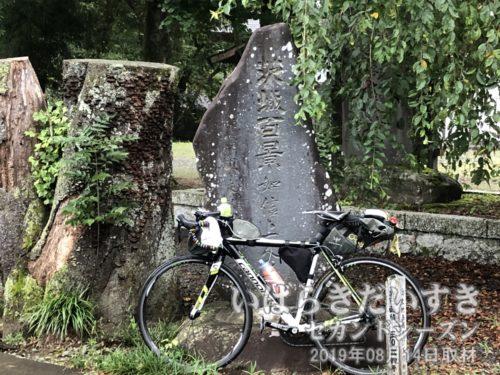 茨城百景 如信上人の墓