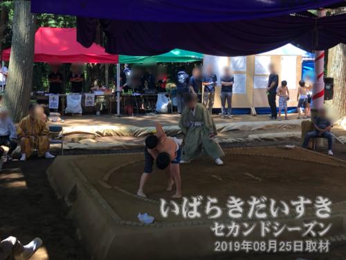 『奉納相撲』<br>化蘇沼稲荷神社の「奉納相撲」は学年別に相撲を取ります。