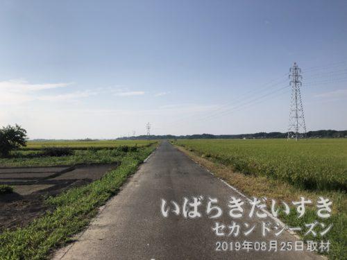 整備された農道を北上する。