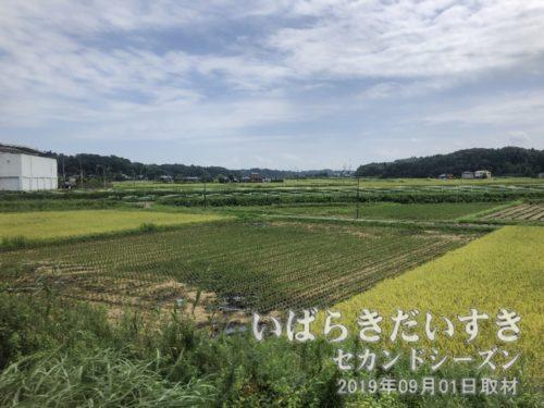 成田の田園風景が広がる。