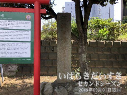 茨城百景 鹿島神宮景勝地<br>この山の上に茨城百景碑があるのは、駅舎がある低いところが海だったことを意味しているのだろうか。