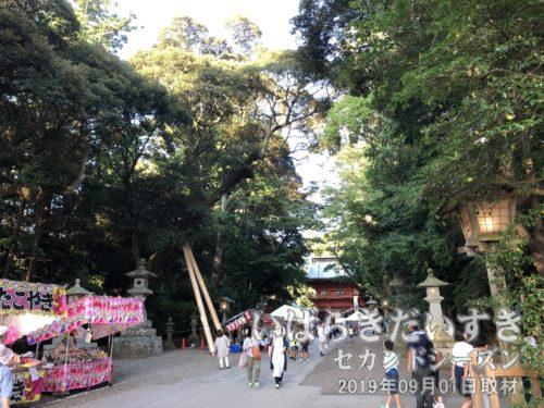 鹿島神宮 参道。
