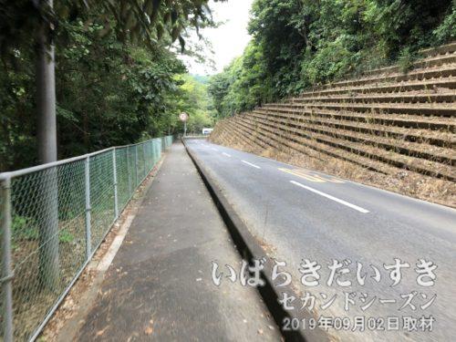鹿島神宮の外道を通る。