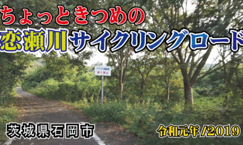 恋瀬川サイクリングロード_茨城県石岡市