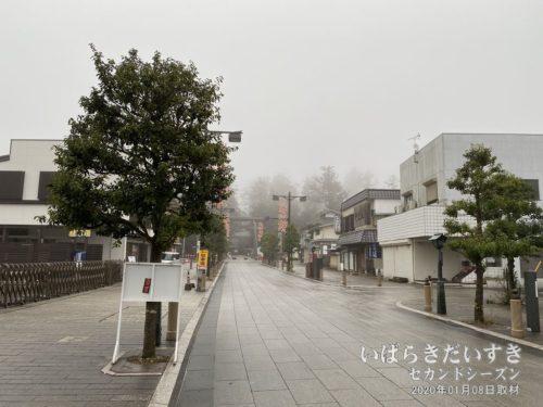 鹿島神宮 参道