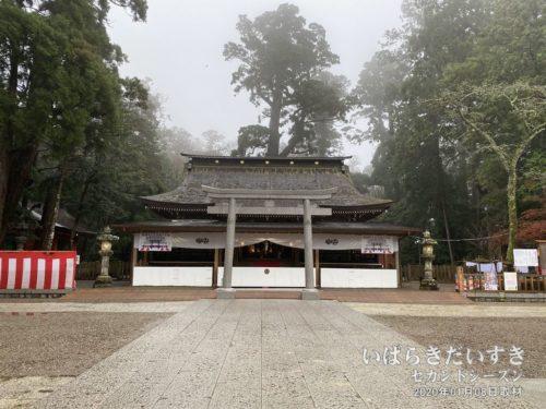 鹿島神宮 拝殿 初詣モード