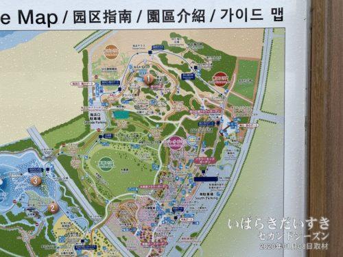 【 ひたち海浜公園MAP(一部)】<br>現在地は真下部分で、目的地は写真中央辺り。歩いて20分くらいかかります。