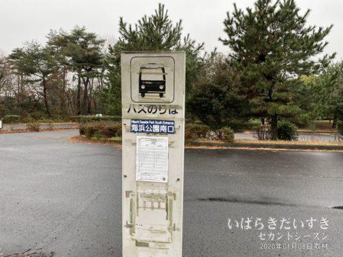 勝田駅から来る路線バスはここで折り返し。