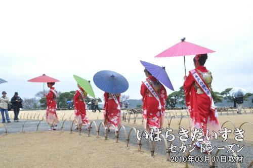 雨の日の偕楽園 大撮影会