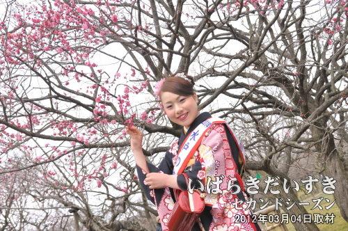 梅の木と梅大使_2012