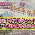 2020年_春_駅からハイキング_水戸からハイキング~水戸の春は梅の花から_水戸市