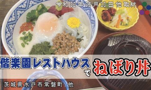 ねばり丼 偕楽園レストハウス 水戸市