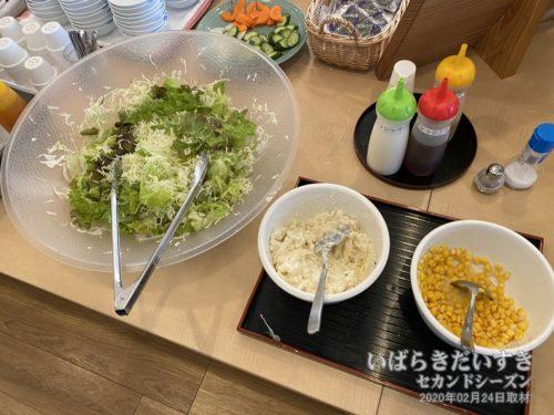 野菜サラダバー。