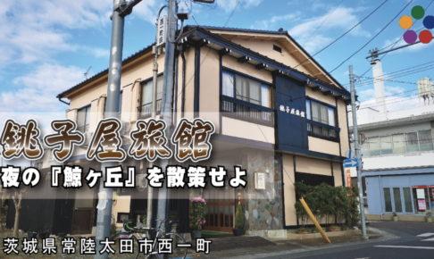 銚子屋旅館_夜の『鯨ヶ丘』を散策せよ_茨城県常陸太田市西一町