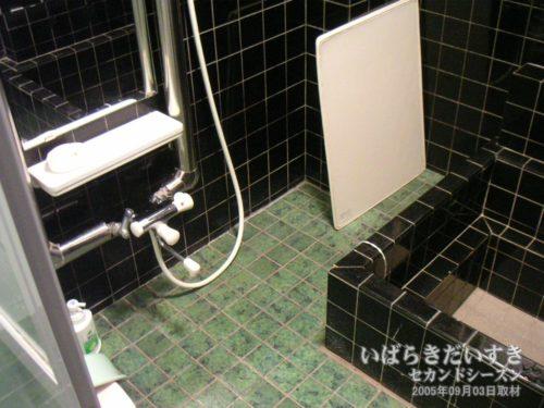 大浴場?(2005):ホテルがんけ
