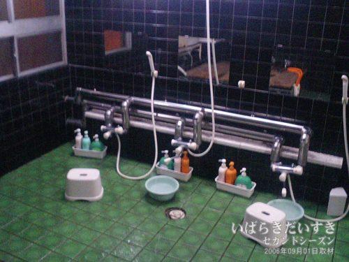 大浴場(2006):ホテルがんけ