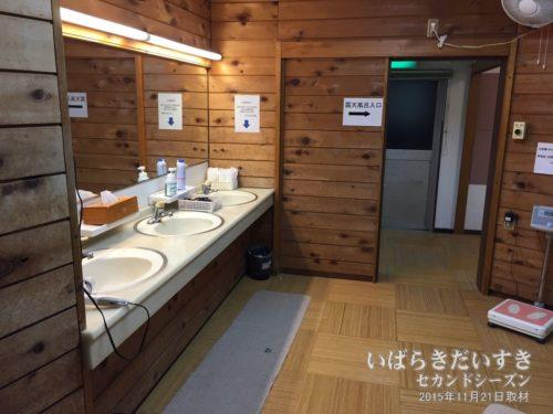 脱衣所 / 洗面 :ホテル奥久慈館