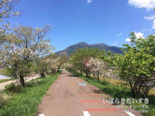 筑波山 / つくばりんりんロード