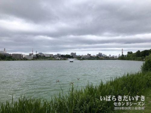 水戸 千波湖