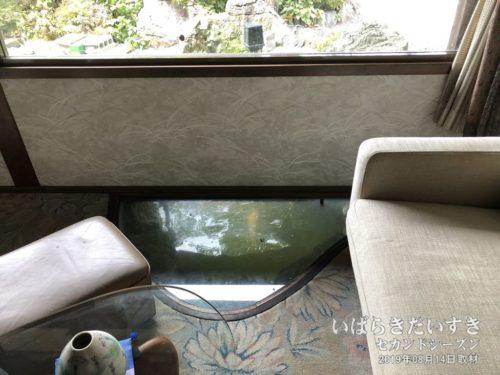 床の一部がガラス張りになっていて、鯉が見える!