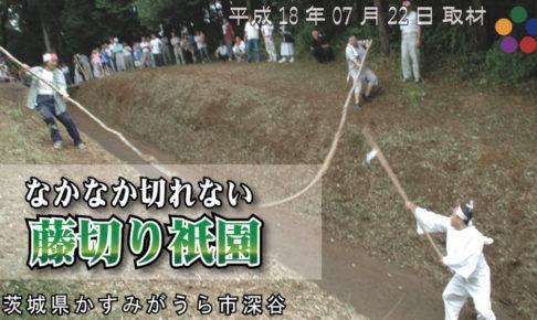 なかなか切れない 藤切り祇園 / 2006年(平成18年)07月22日 茨城県かすみがうら市深谷