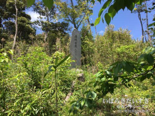 斜面を少し登っていくと、ヤブの中に茨城百景碑があります。