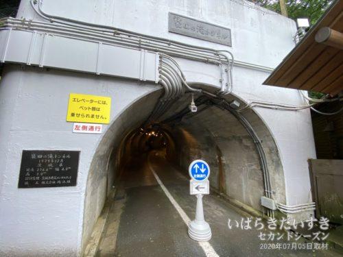 袋田トンネル:これより先は有料です。